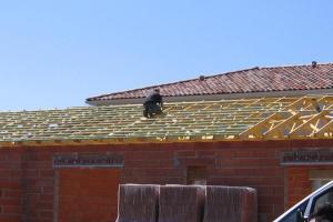 Macon maconnerie lezat sur leze toiture 1